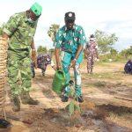 Journée nationale de l'arbre : Les autorités de la Kozah ont fait leur part