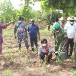 Les députés de Dougelgou rêvent d'un couvert végétal de leur préfecture